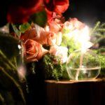 Profile: Ludwig's Rose Farm