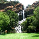 Profile: Walter Sisulu National Botanical Garden