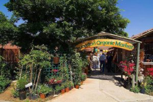 Bryanston Organic and Natural Market