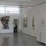 Profile: David Krut Projects
