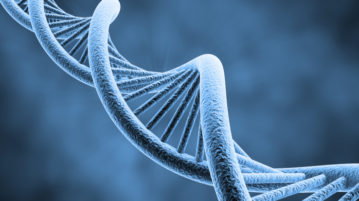 genome-engineering-and-stem-cells