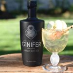 Six Local Gins to Try this Summer