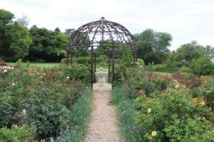 the garden show