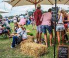 Untapped Craft Brew Festival