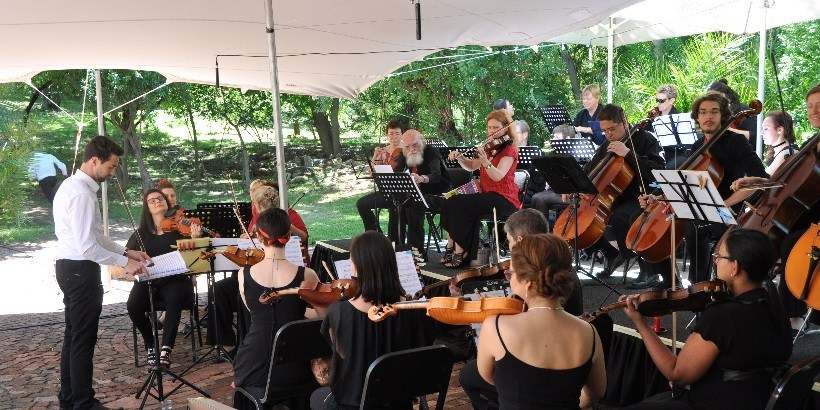Symphony in the Garden