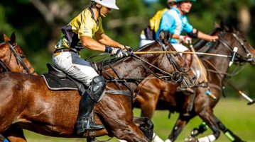nedbank international polo