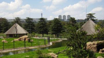 JHB-zoo