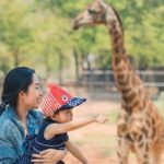 Mother's Day Concert at Joburg Zoo