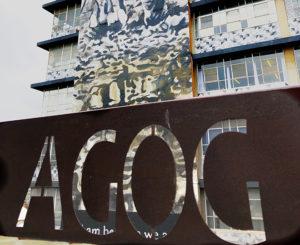 Profile: Agog Gallery