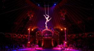 symphonic circus