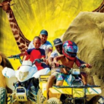 Joburg Zoo Family Fun Day
