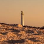 Lighthouse Festival 2020